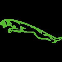 Jaguar Timingset herramientas para el auto