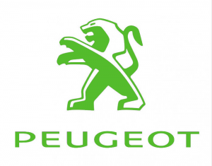 Peugeot Instrumento de vehículos Timingset