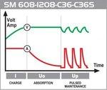 Cargador de carga lenta de 60 W con 4 programas de carga