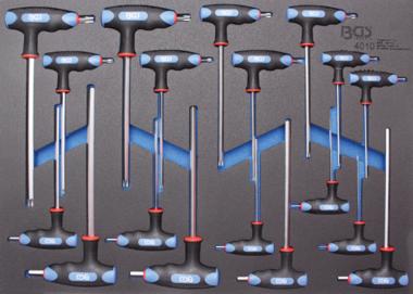 3/3 Bandeja de herramientas para carretillas de taller: 18 piezas Int. Maleficio. Y T-Star T-Bar Llaves