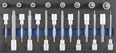 Bandeja de herramientas 1/3: Juego de dados de 12.5 mm (1/2 pulgada) Spline (para XZN) 22 piezas