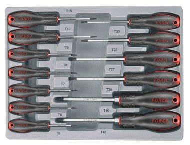 Módulo 13 destornillador para tornillos Torx perforado